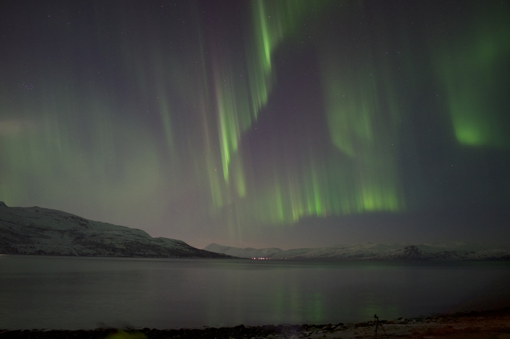 We are huge fans of watching the northern lights and we think the best place to see them is in Tromsø, Norway