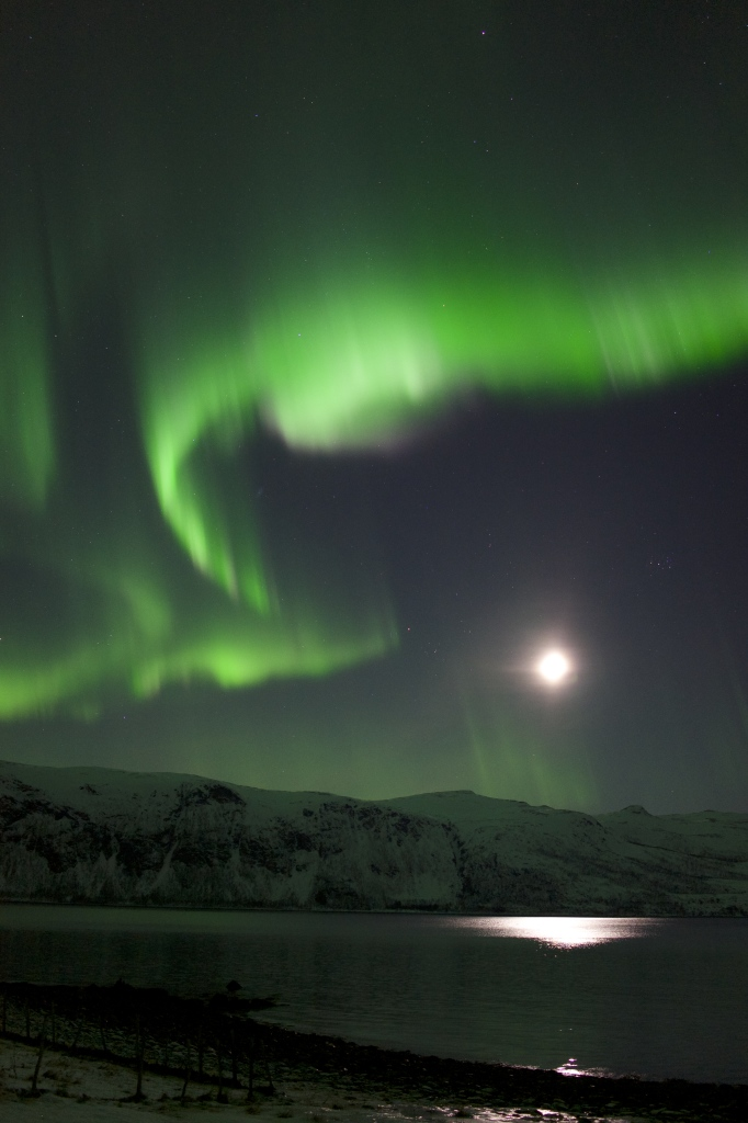 Photographing the northern lights dancing high in the sky near Tromsø, Norway
