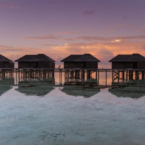 The sunsets in the Maldives are unlike anything you've ever seen. The sky is painted beautiful shades of pink, purple and orange. This one in particular was gorgeous at Lily Beach Resort and Spa in the Maldives