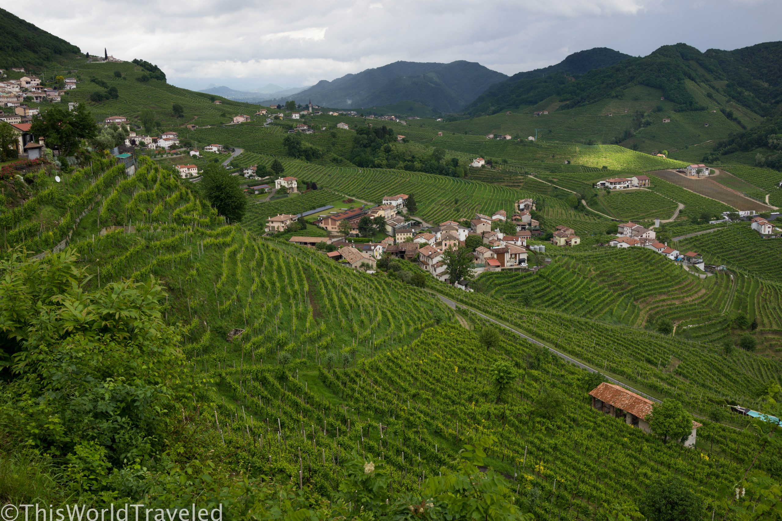 Wine Tasting Along Italy's Prosecco Road