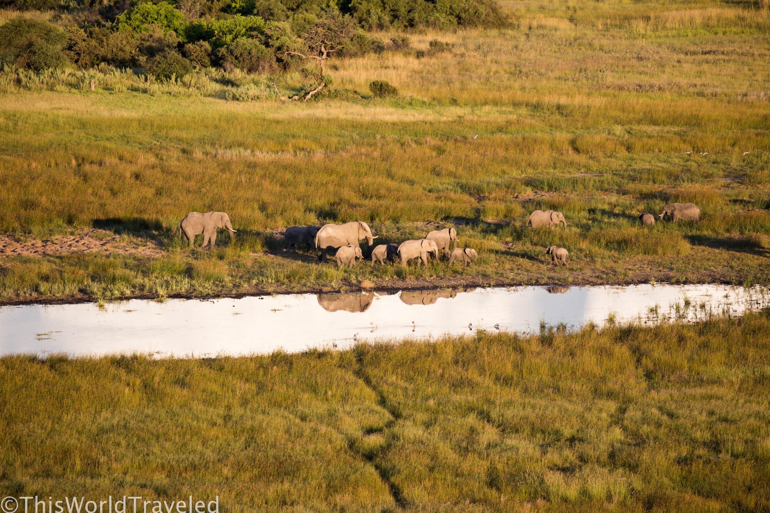 Adventures on the Okavango Delta: Mokoro Ride & Helicopter Flight