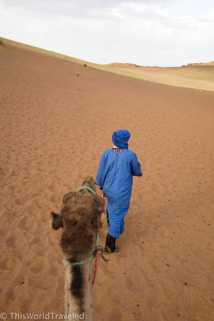 Our guide leading our camels during our trek in Morocco