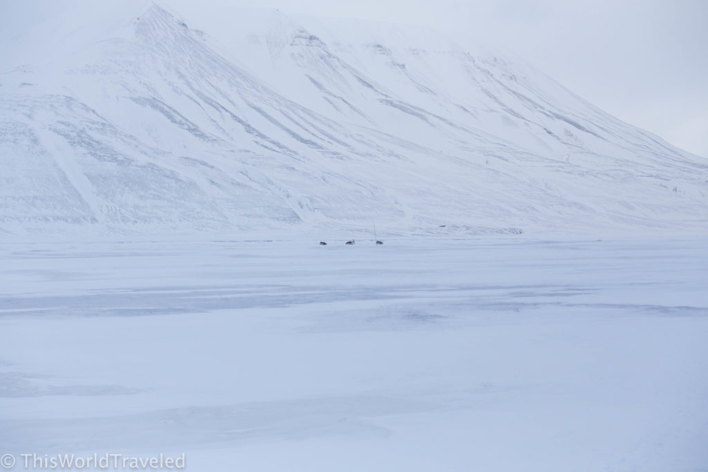 Heading out on the polar sleds out of Longyearbyen in Svalbard