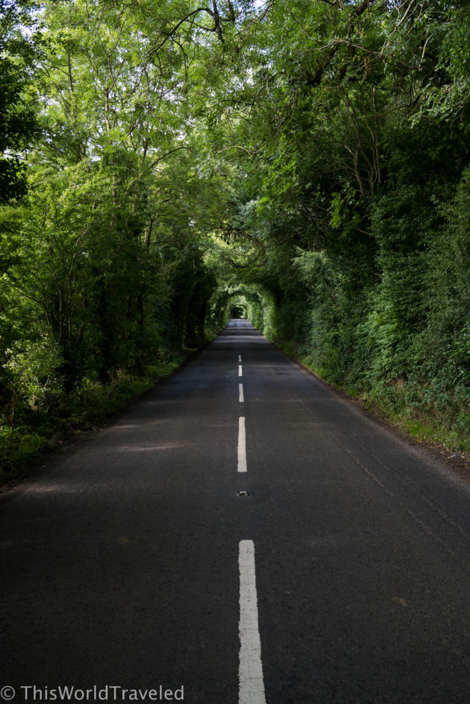 One of the beautiful roads near the Dark Hedges in Northern Ireland