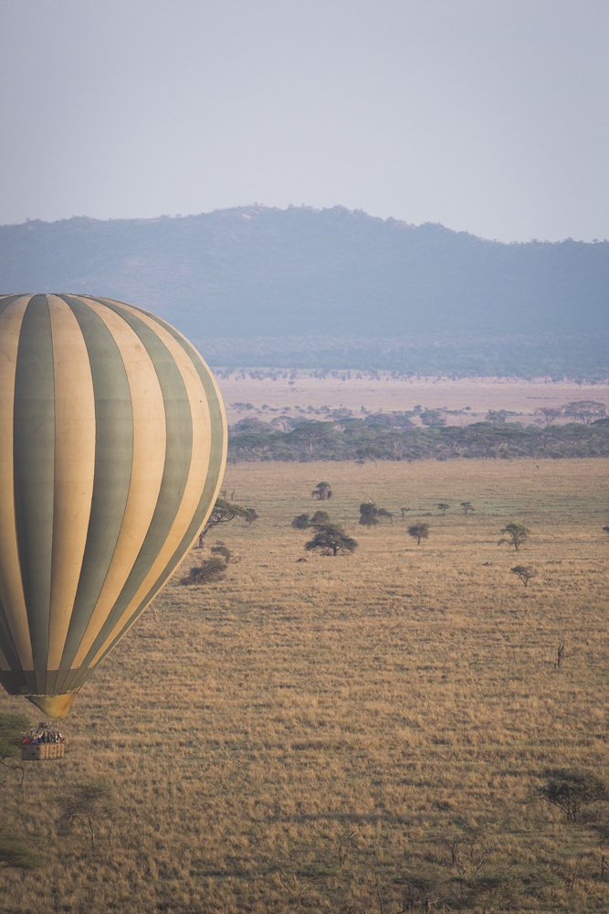 Taking flight in a hot air balloon over the Serengeti is an incredible way to see more wildlife in Tanzania