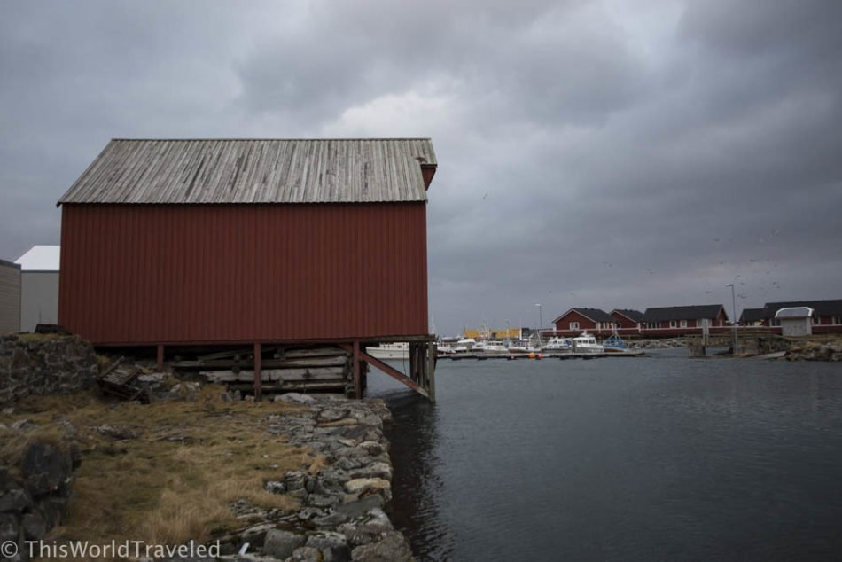 Exploring the beauty of Andenes
