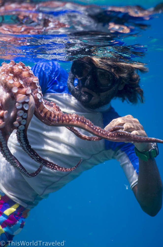 You can go fishing or octopus hunting in the Maldives