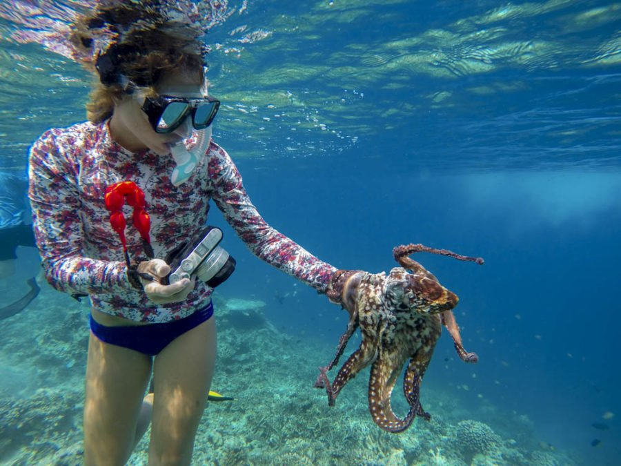 Girl holding an octopus in the Maldives on a local island