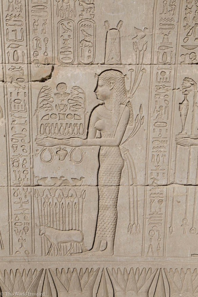 Some of the hieroglyphics that you will see on the temples when you travel Egypt