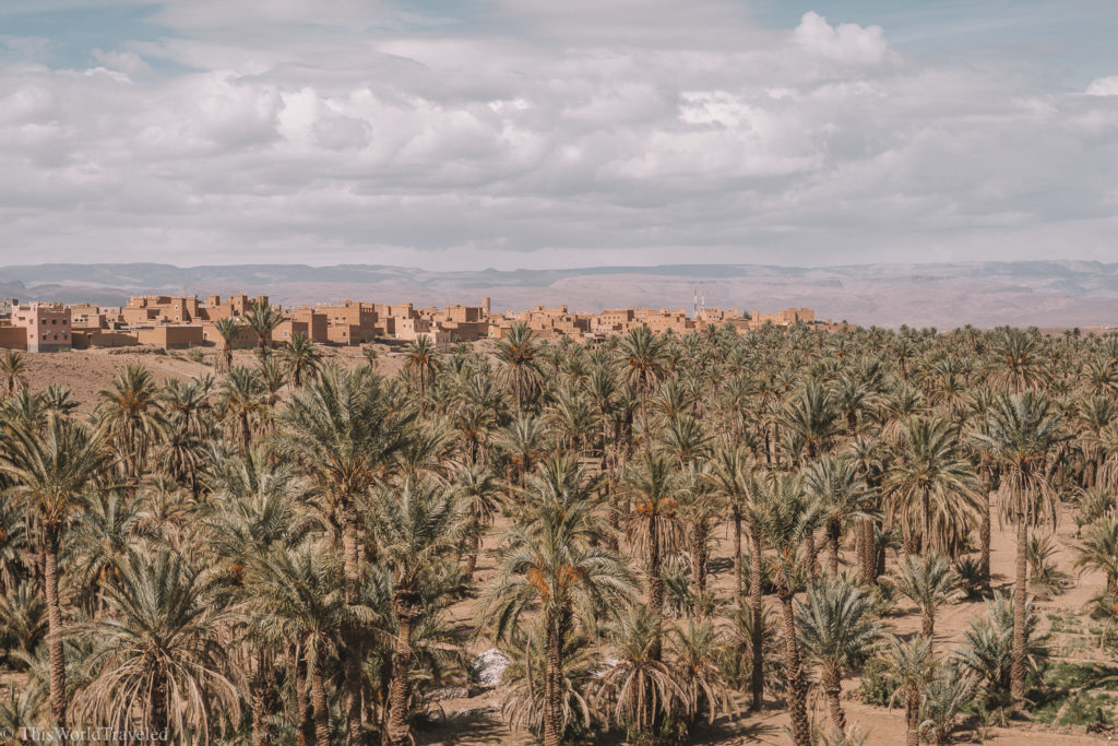 The beautiful oasis in Morocco that you will see as you drive towards the desert!
