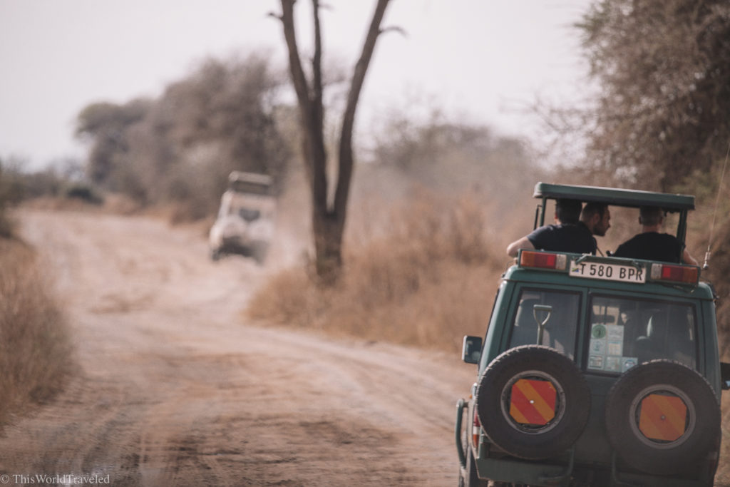 Game drives in Tanzania are done in jeeps like these!
