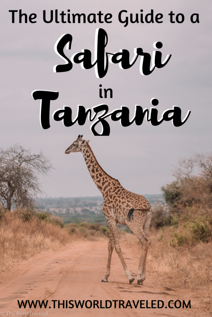The Ultimate Guide to a Safari in Tanzania