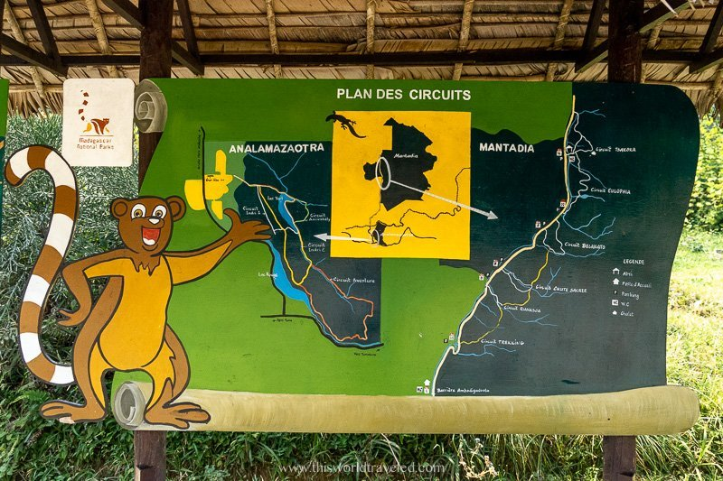 The different routes of circuits that you can take inside the Andasibe Mantadia National Park in Madagascar