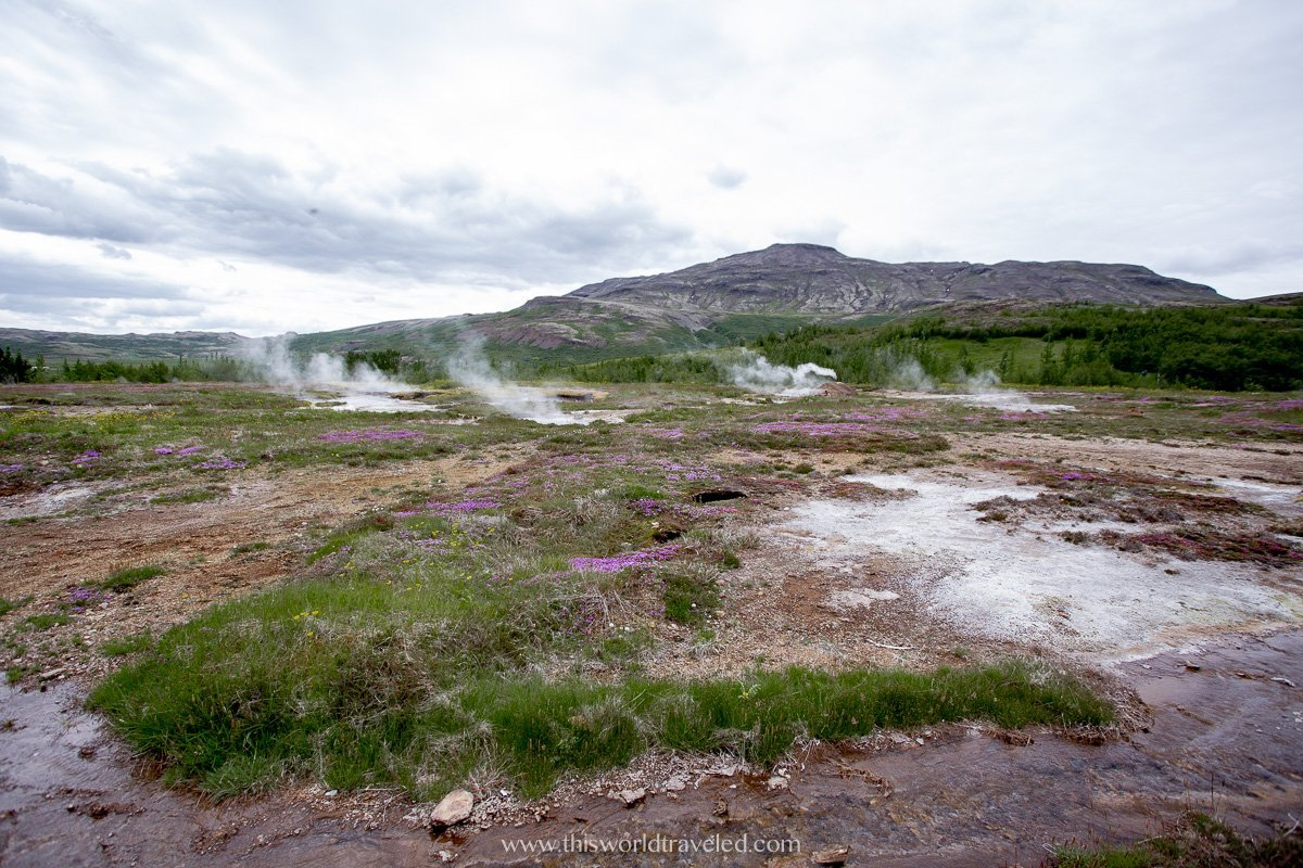 The geothermal area surrounding geyser in Iceland's Golden Circle
