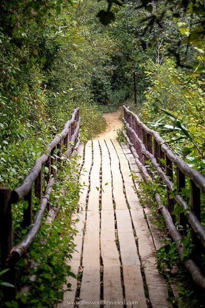 One of the hiking trails in the Reserve in Madagascar