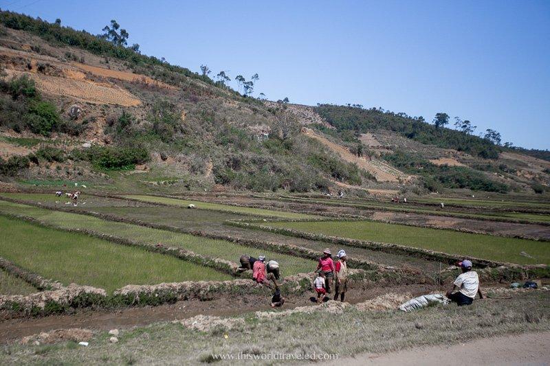 Landscapes in Madagascar