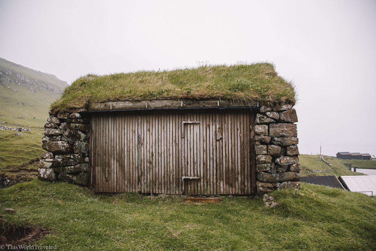 A grass covered thatched roof in Mykines