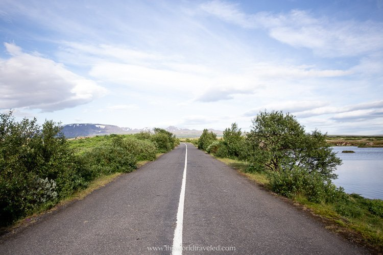 The Ring Road in Iceland during the summer months with flowers and plants on both sides of the road