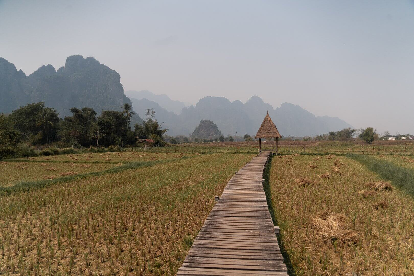 The rice terraces at Vieng Tara Villa in Laos