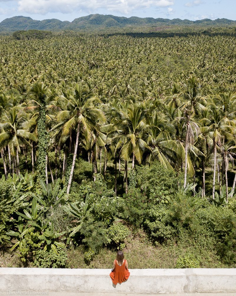 Girl standing in front of the coconut farm on the main road in Siargao Island, Philippines