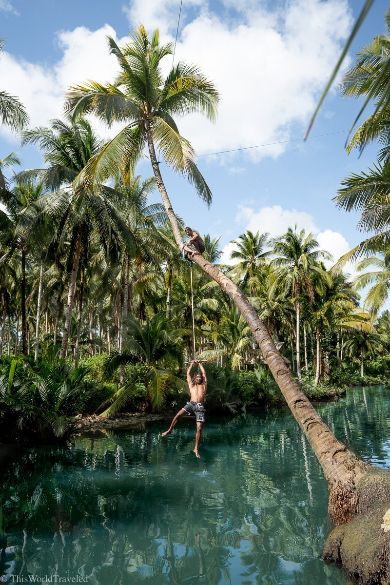 Guy swinging from the rope on the coconut tree at the Maasin River on Siargao Island