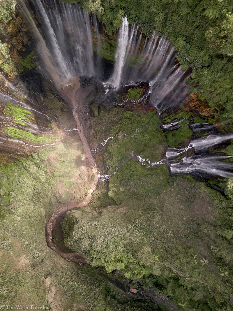 Drone shot of the Tumpak Sewu waterfall and it looks like the tree of life