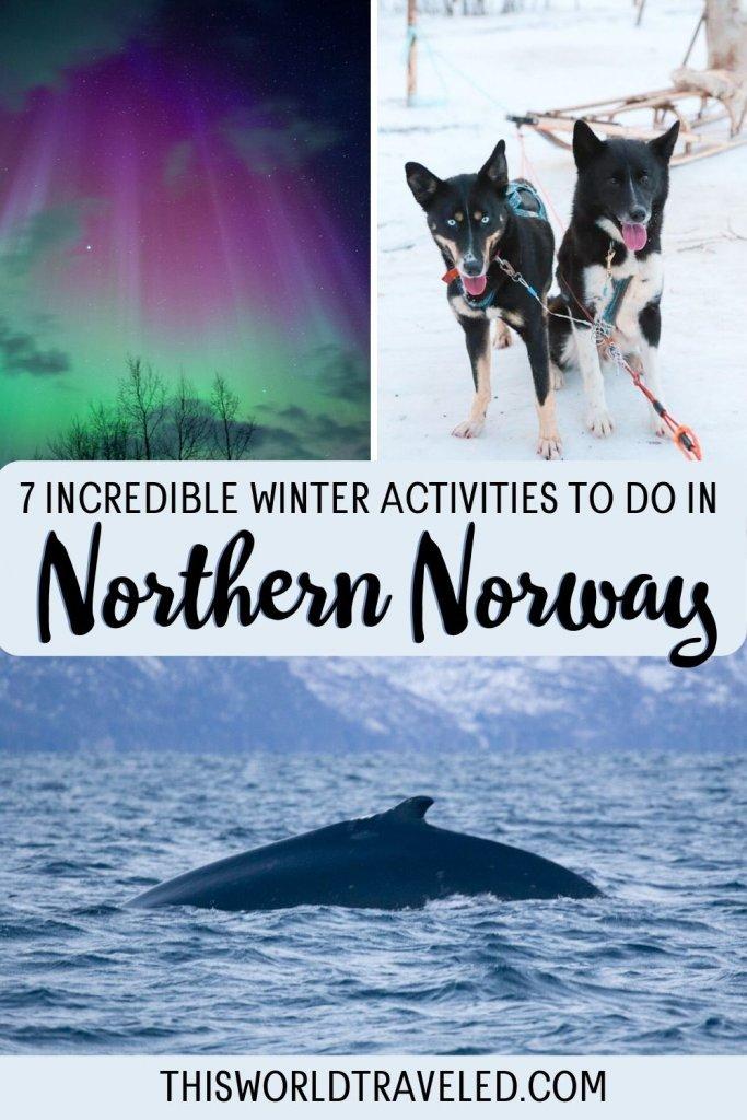 7 Incredible Winter Activities to Do in Northern Norway