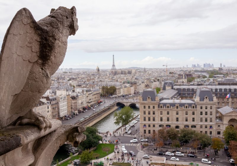 The view of Paris and the Eiffel Tower from the Notre-Dame Cathedral