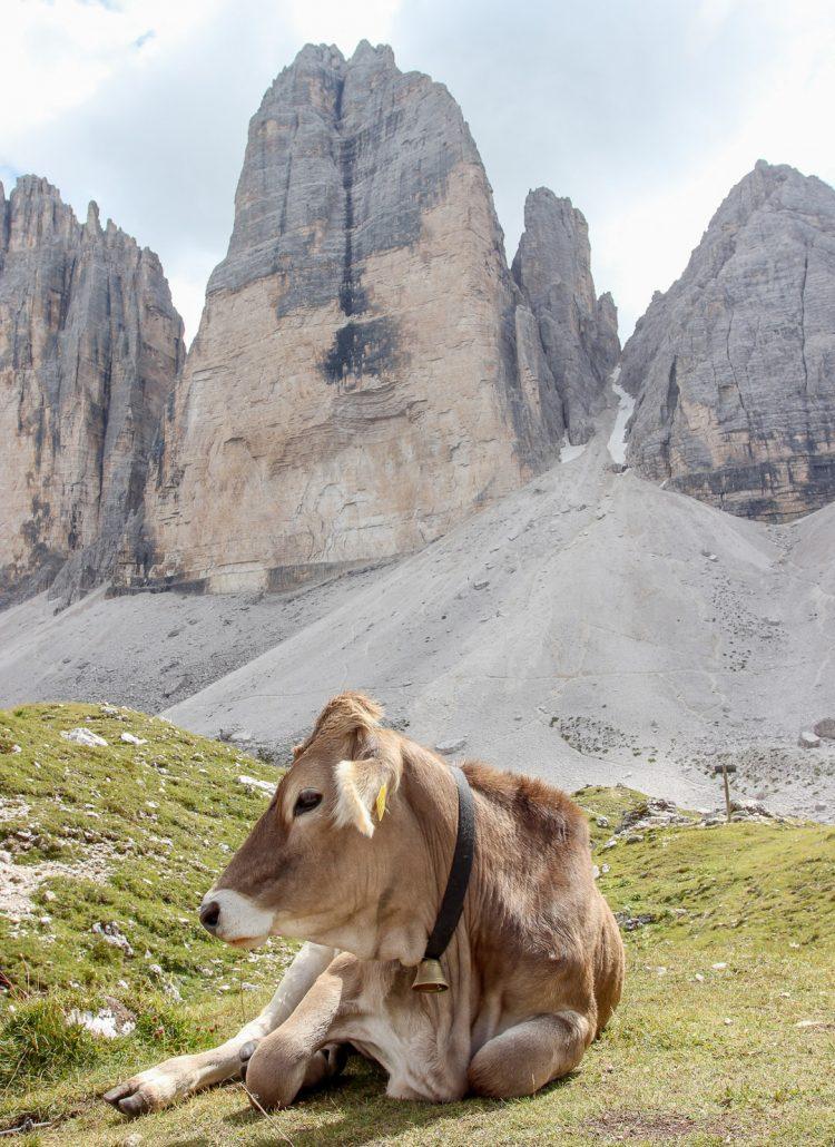 Hiking in Tre Cime di Lavaredo in the Italian Dolomites