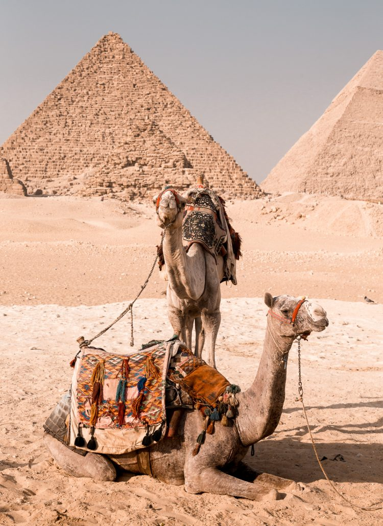 Egypt Travel: 8 Days in Cairo, Luxor and Aswan