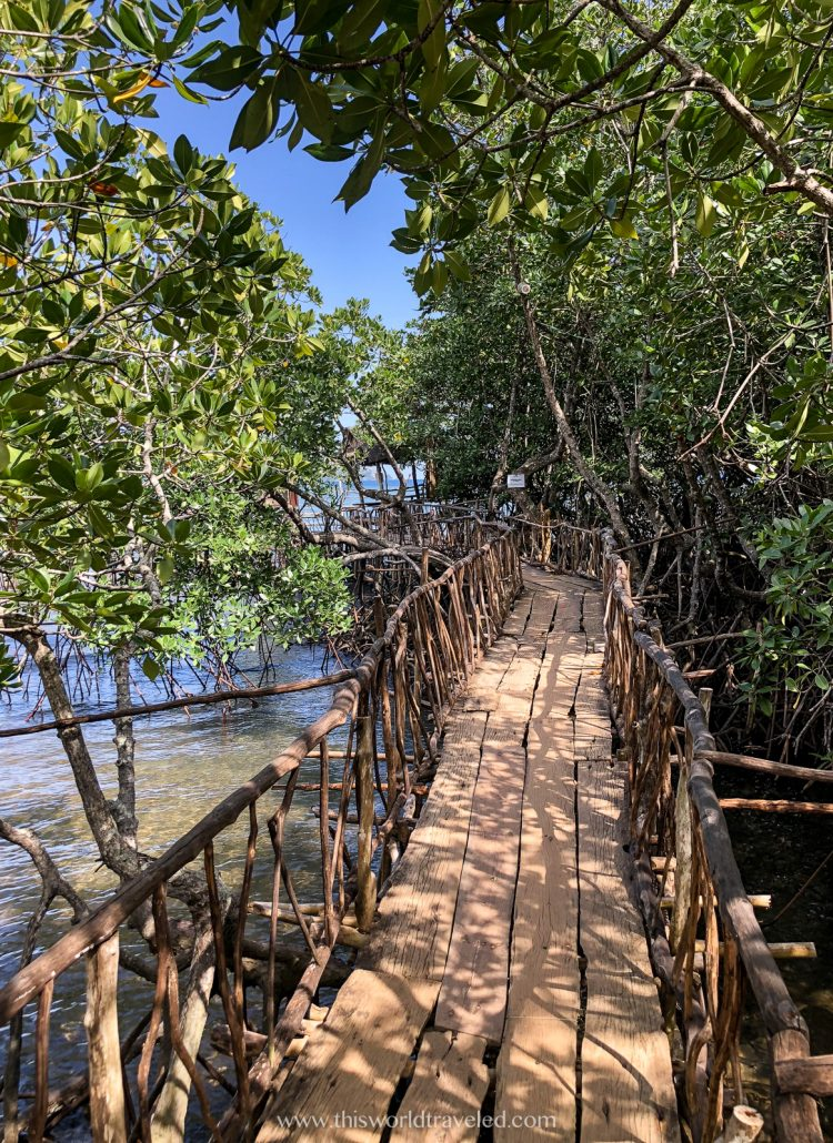 The wooden bridge at the Manquinit Hot Springs in Coron, Palawan