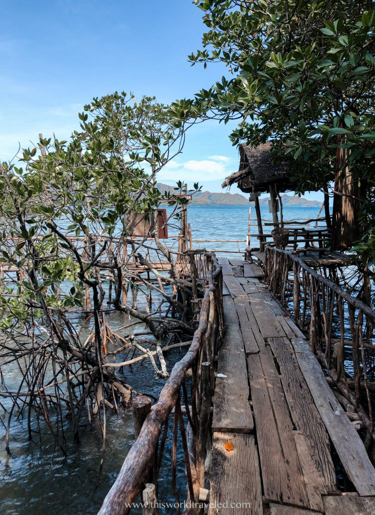 The bamboo bridge at the Manquinit Hot Springs in Coron, Palawan
