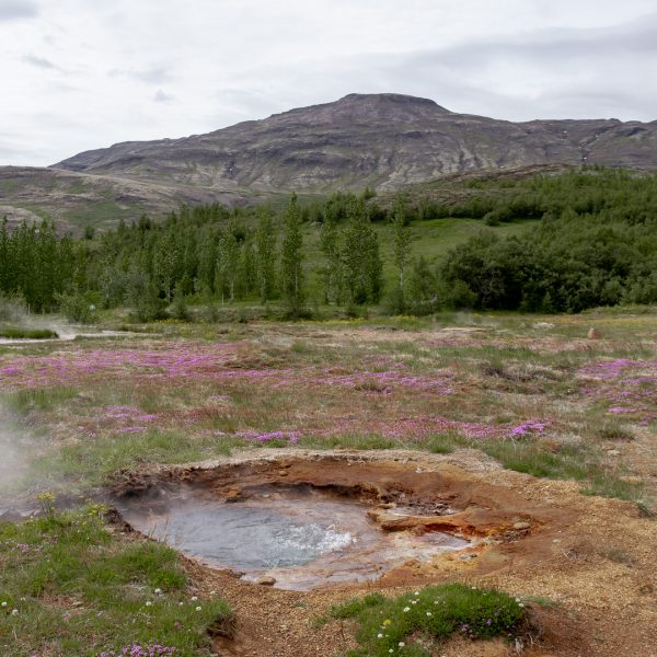 The Golden Circle Iceland: How to Visit Without a Tour