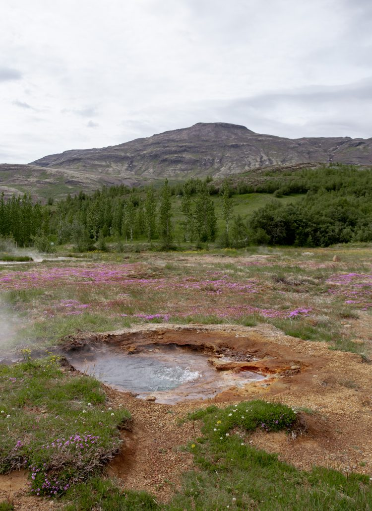 Strokkur Geysir in Iceland's Golden Circle
