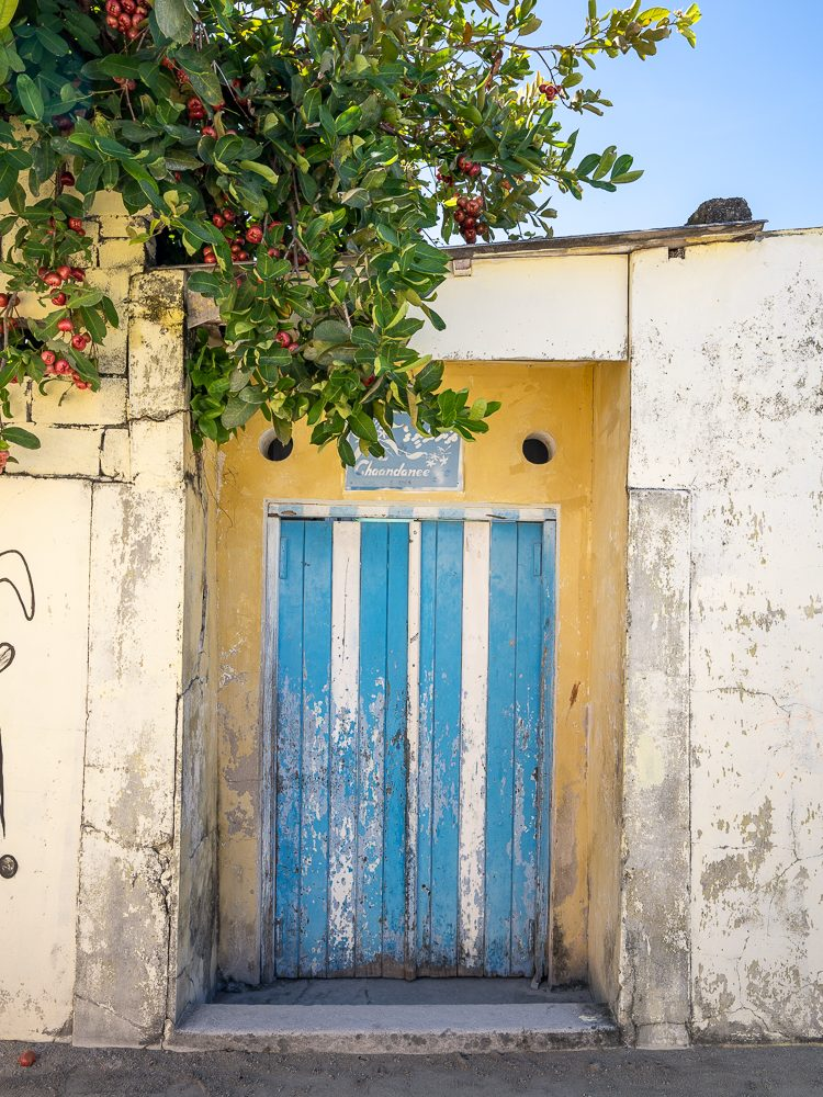 Yellow and blue door to a local home on the island of Gulhi in the Maldives