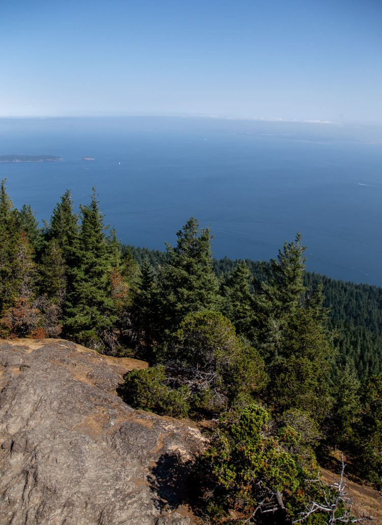 Views from the Mount Constitution hike of the douglas fir trees and ocean in Orcas Island