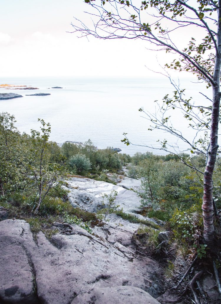 A flat part of a hiking trail surrounded by mountains with a view of the sea in the Lofoten Islands