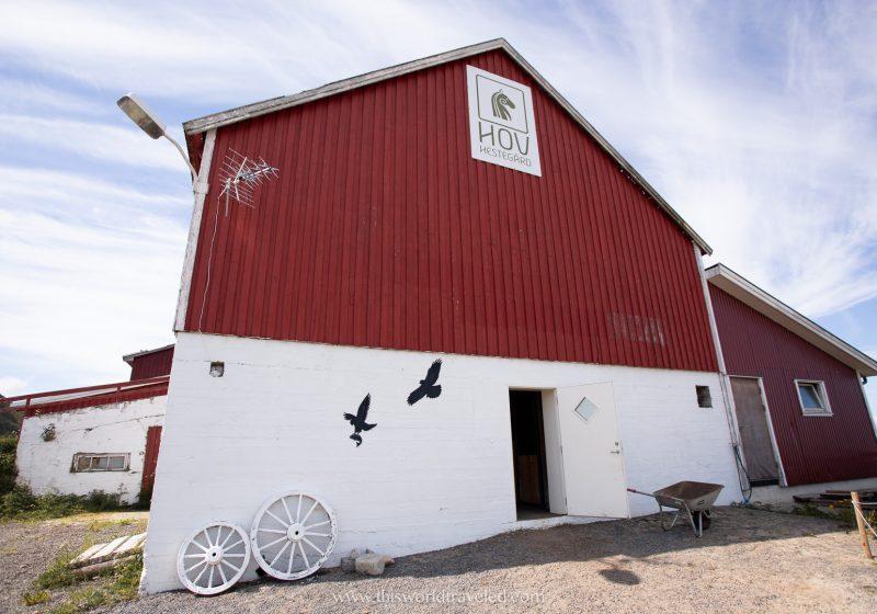 Hov Gård riding center in the Lofoten Islands in Norwa