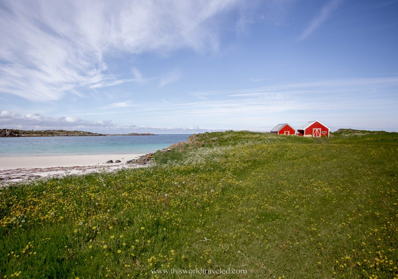 Red houses near the white sandy beach in Hov in the Lofoten Islands