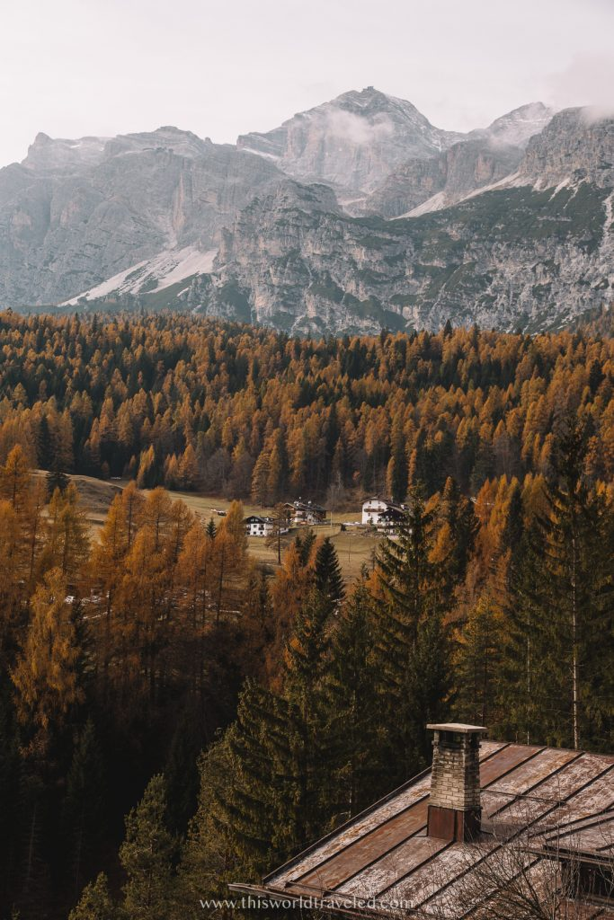 Fall leaves with a massive mountain in the back which is located in northern Italy