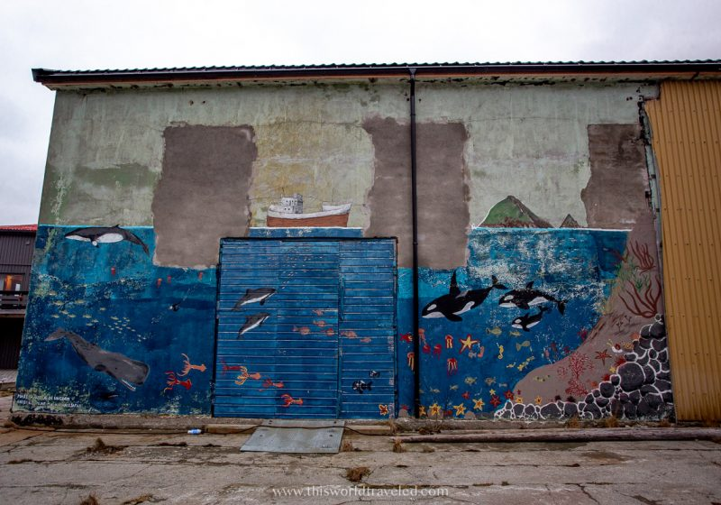 A mural in Andenes with painting of orcas and fish