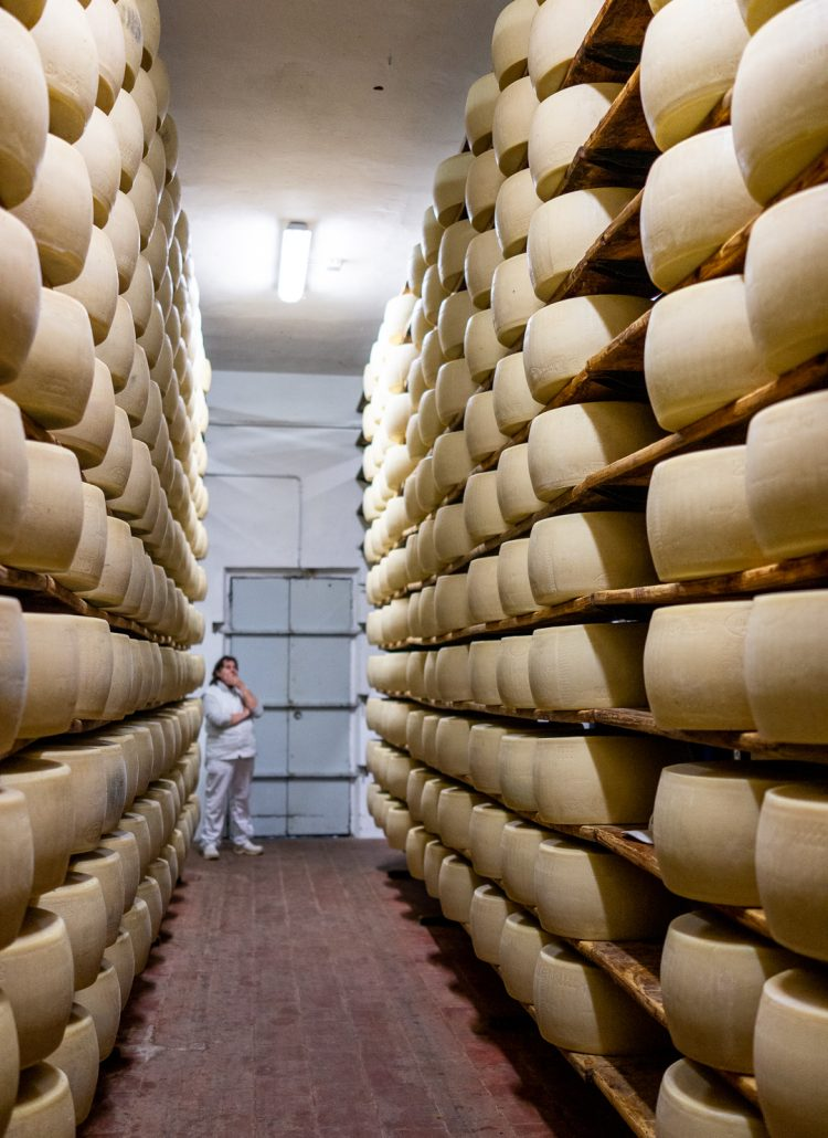 Large wheels of aged parmesan cheese located at a factory in Parma, Italy