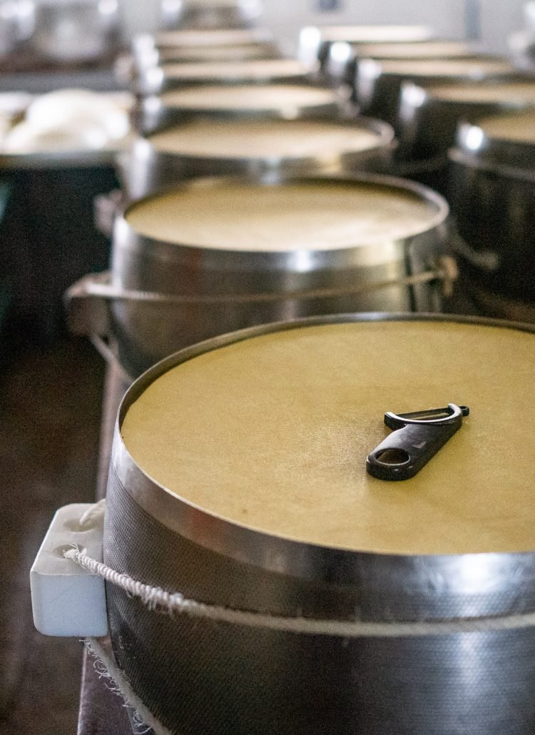 Cylinders filled with parmesan cheese that needs to age and harden in Italy