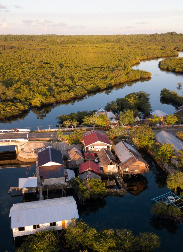Aerial view of a small village with houses build on stills over water and a mangrove forest