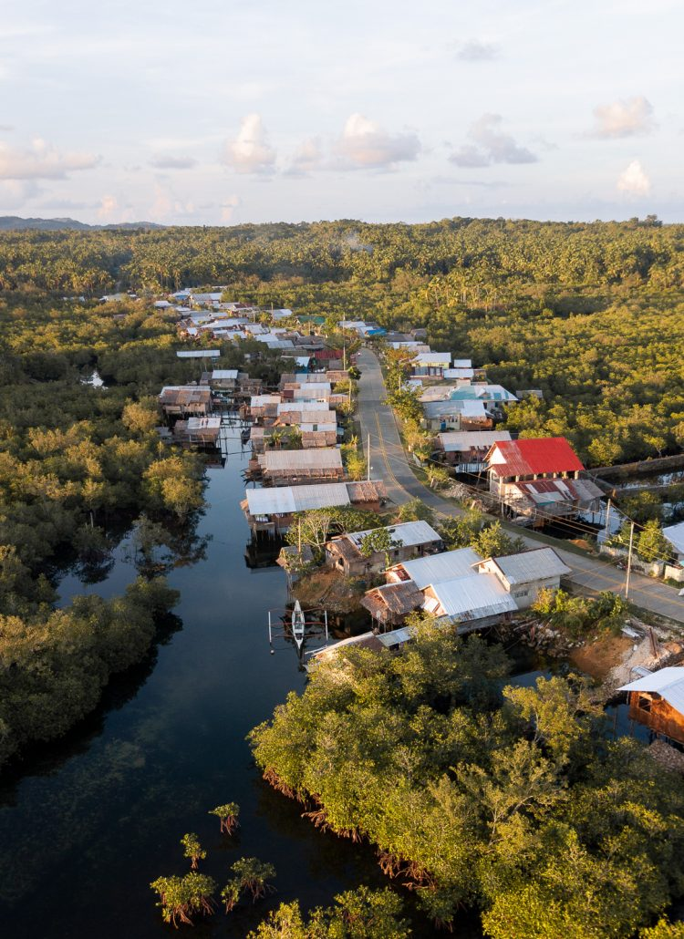 A small village in Siargao that is surrounded by mangroves