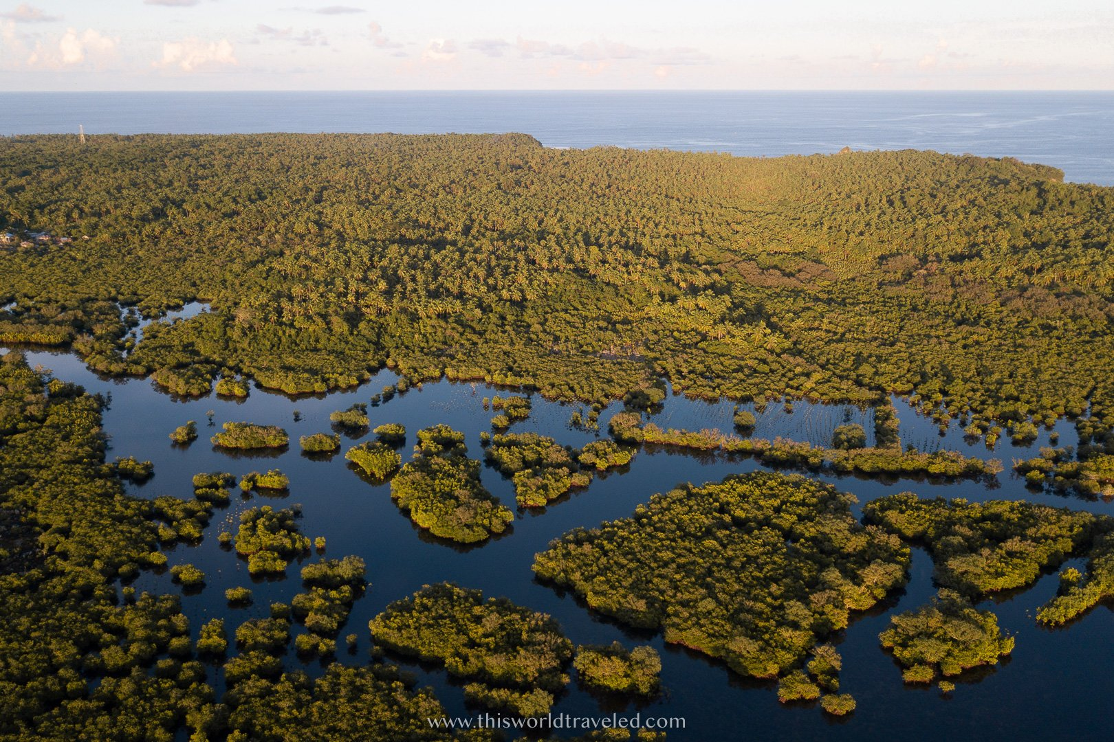 A mangrove forest surrounded by small rivers and lakes on the island of Siargao