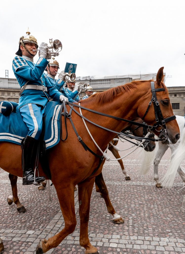 Guards outside the Royal Palace in Stockholm on horseback