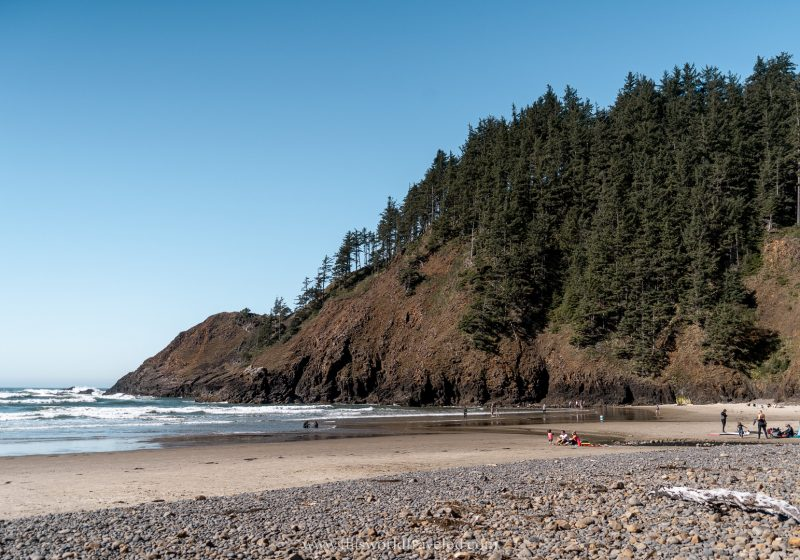 A sandy beach with a rugged coastline and trees up on the cliffs along the Oregon Coast