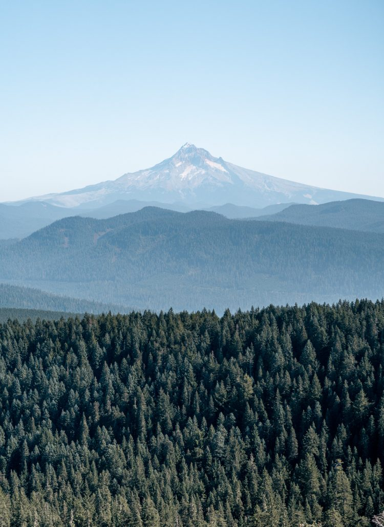 7 Hikes Near Portland Oregon in the United States