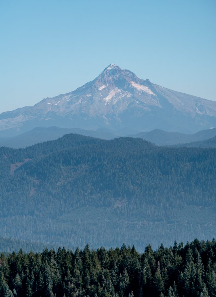 View of Mount Hood from Sherrard Point in Portland